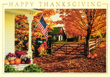 Fall Greetings Thanksgiving Cards